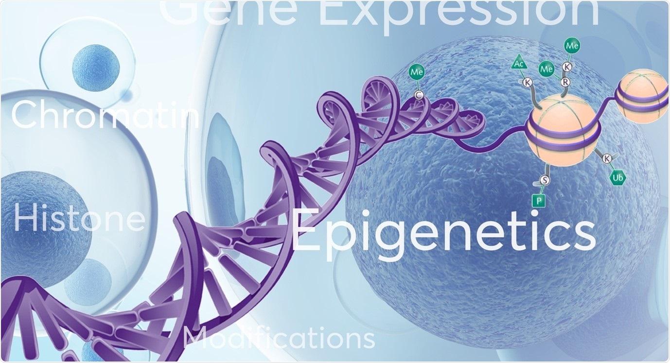 epigentics-image